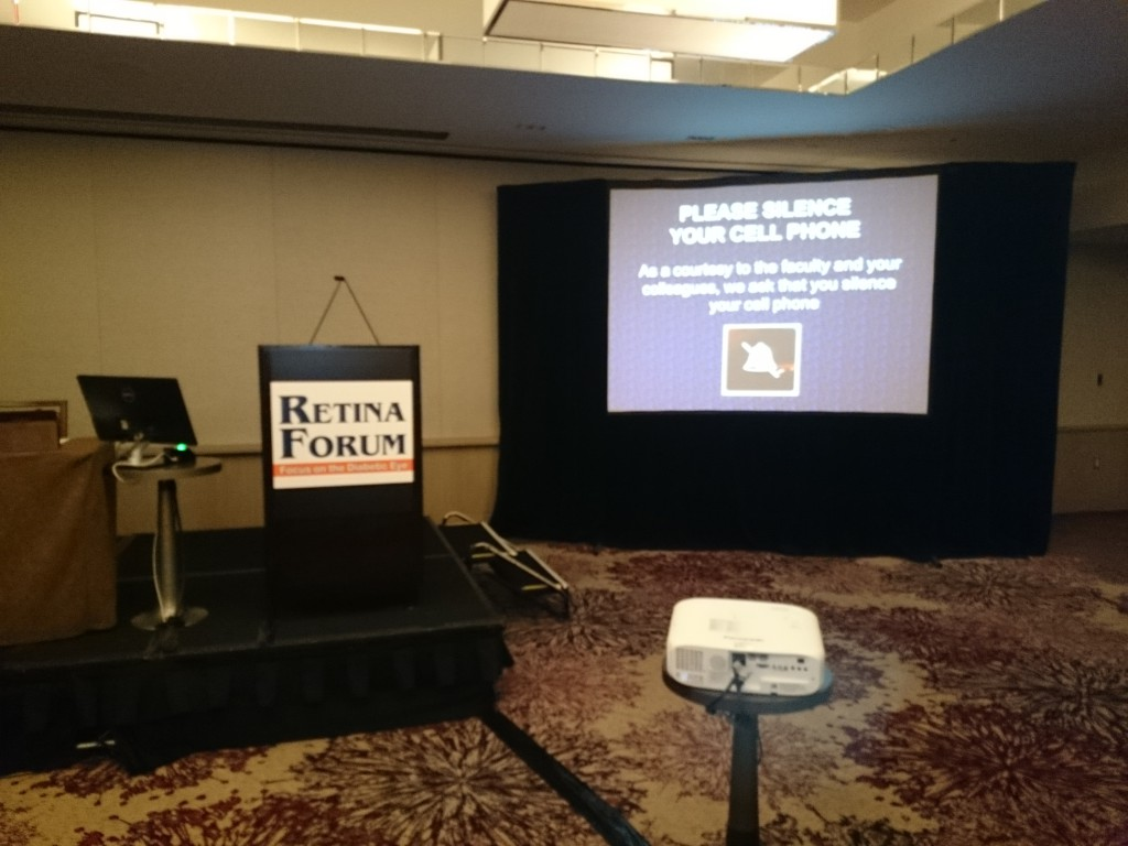 Retina Forum focus on the diabetic eye