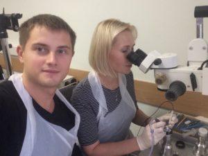 Витреоретинальная хирургия на кадаверных глазах